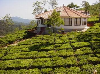 http://www.panchakarma.com/images/ayurveda_yoga_retreat_hospital_centr.jpg
