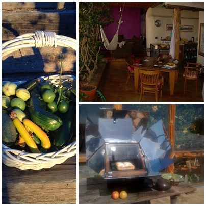 /auromesa_traditional_ayurveda_centre_organic_food.jpg